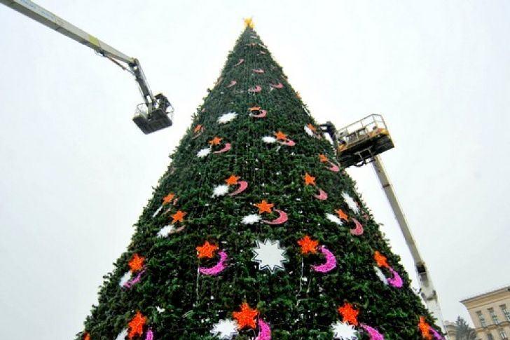 установка альпинистами высокой новогодней елки
